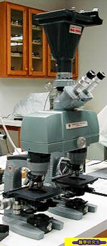 屍體檢驗, 提供死亡的理論-----1
